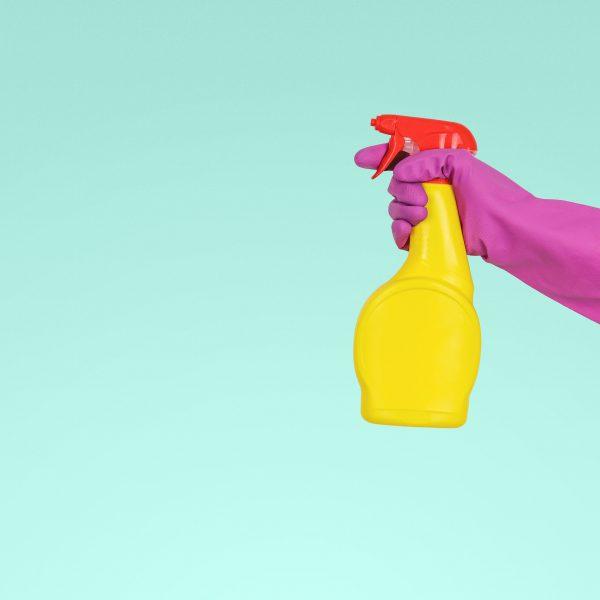 Femme de ménage : démêler le vrai du faux